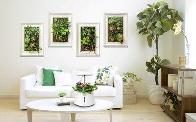 Green Pet hydroponic indoor smart garden and soil planted living wall planter creat a green house for you!