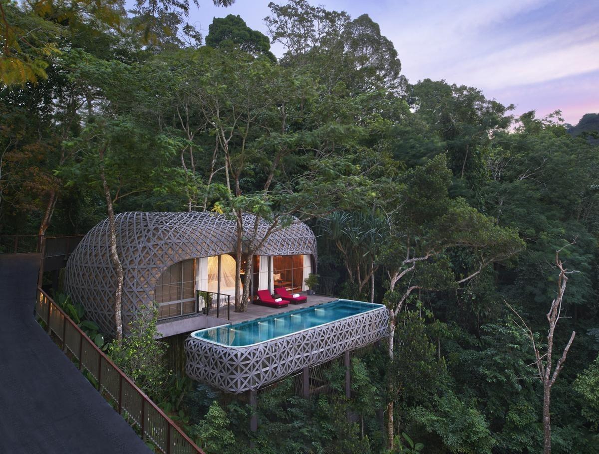 Αποτέλεσμα εικόνας για Treetop travel climbs in popularity shows Hotels.com
