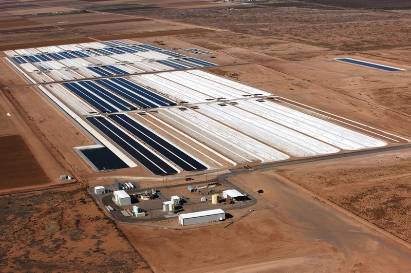 Algae farm in Columbus, New Mexico, which will expand Qualitas Health's total acreage to 150 acres in cultivation.