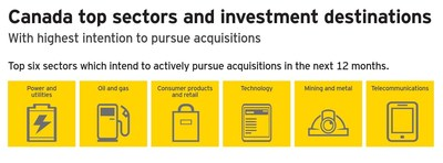 EY's 16th Canadian Capital Confidence Barometer identifies the top six sectors which intend to actively pursue acquisitions in the next 12 months. (CNW Group/EY (Ernst & Young))