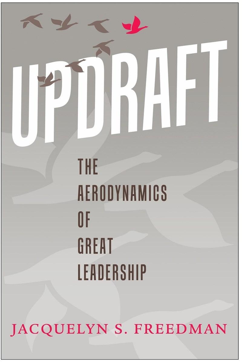 Updraft book cover