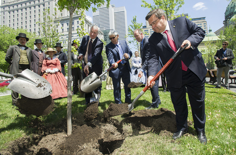 Montreal Mayor Denis Coderre plants a tree in downtown Montreal in honor of Canada's 150th and Montreal 375th anniversaries. CN this year is planting trees in honour of Canada's 150th in communities across the country. (CNW Group/CN)
