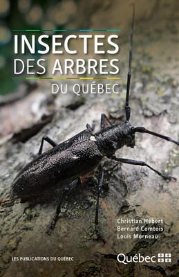 Couverture Insectes des arbres du Québec (Groupe CNW/Publications du Québec)