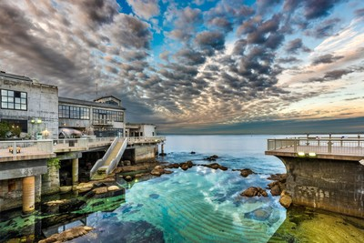 Monterey bay aquarium will be a 39 voice for the ocean 39 at u for Pool show monterey