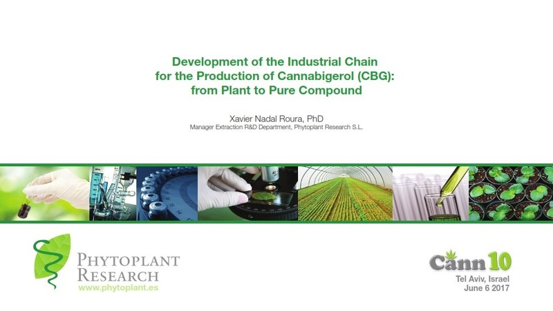 Development of the Industrial Chain for the Production of Cannabigerol (CBG): from Plant to Pure Compound