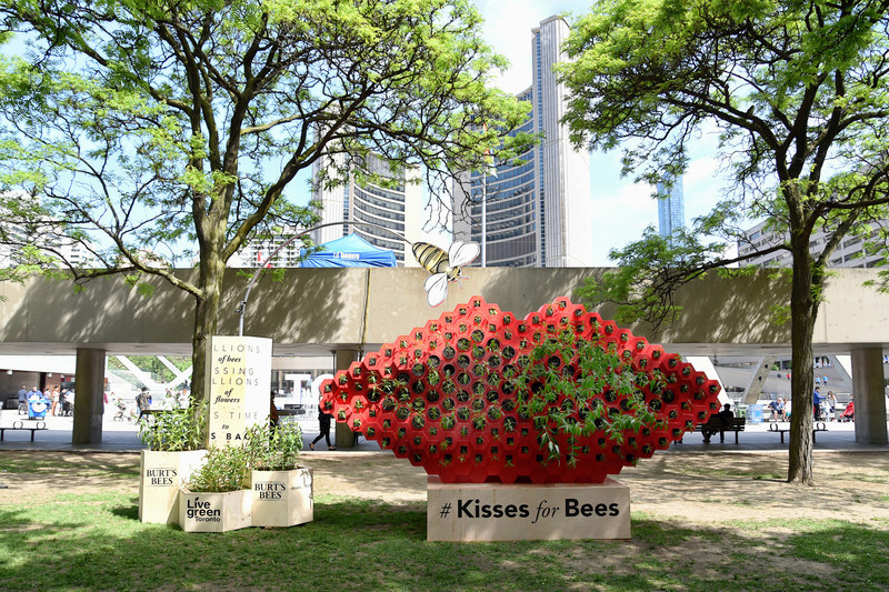 To celebrate National Pollinator Week, June 19 to 25, Burt's Bees has partnered with the City of Toronto on an art installation at Nathan Phillips Square. The #KissesForBees installation – an oversized, stylized pair of lips planted with native wildflowers – is designed to raise awareness about pollinators and they role they play in our lives. (CNW Group/Burt's Bees Canada)