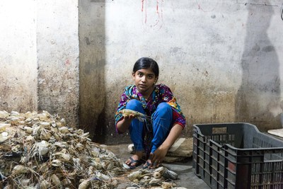 A young girl working in a shrimp processing plant in Bangladesh. Shrimp is a significant Canadian import with a high risk of child labour. Photo/World Vision (CNW Group/World Vision Canada)
