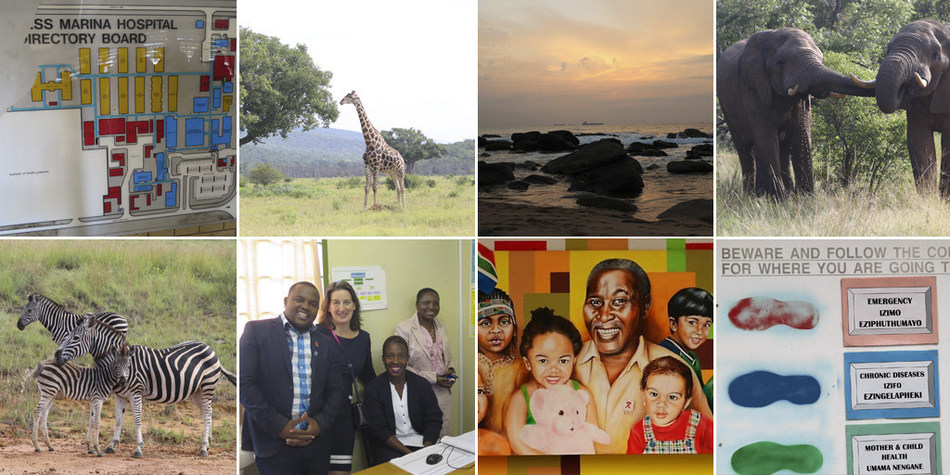 Photos of Southern Africa's beautiful landscape, stunning wildlife, and diverse healthcare environments collected by MEDITECH's Executive VP and COO Michelle O'Connor.