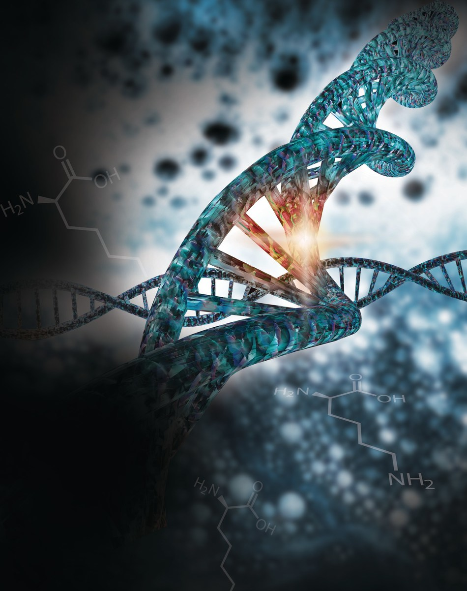 Merck has been awarded its first CRISPR patent by the Australian Patent Office. The patent covers chromosomal integration, or cutting of the chromosomal sequence of eukaryotic cells and insertion of an external or donor DNA sequence into those cells using CRISPR