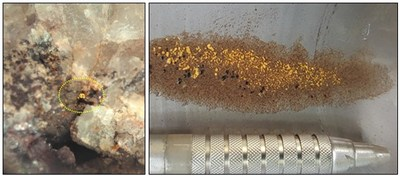 Figure 4a: Example of visible gold in quartz veining east of the Caninana Target (grain ~1mm in size.  Figure 4b: Gold-anomalous pan concentrate from the Bico de Jaca Target. (CNW Group/Meridian Mining S.E.)