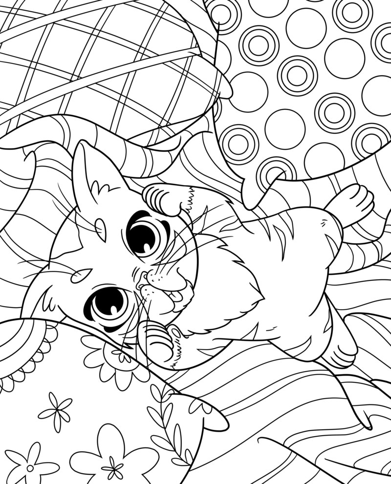 Sample Page from the Lil Bub Coloring Book