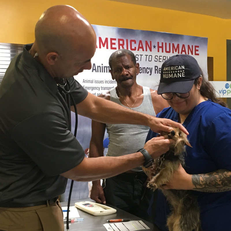 American Humane, which for 140 years has been first to serve in the protection of animals, launched an effort to help members of one of the most vulnerable groups -- pets of the more than 500,000 homeless individuals living in the United States today. (PRNewsfoto/American Humane)