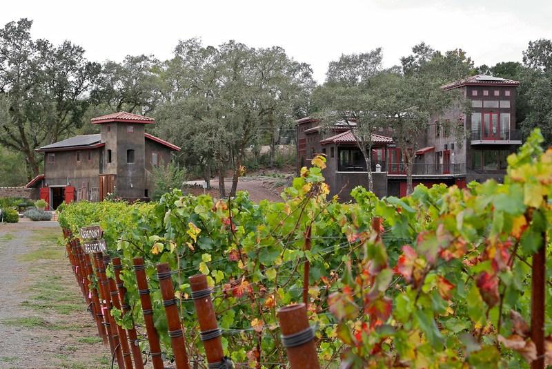 Gracianna Winery - Mercedes Riverblock Estate Vineyward