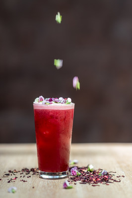 Iced Berry Hibiscus at the Pure Leaf Tea House. Photo Credit: Daniel Krieger.