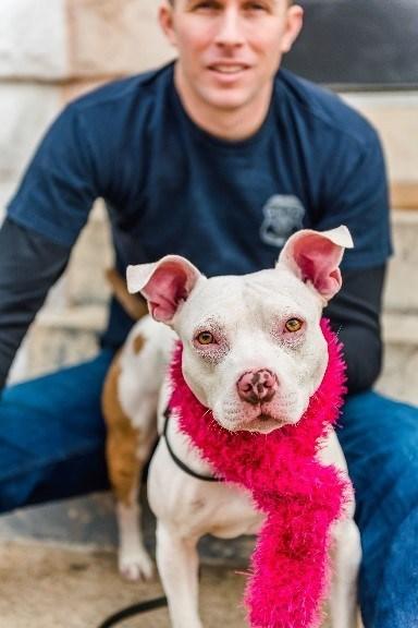 Petco Foundation Announces Campaign Celebrating Everyday Lifesavers for Animals