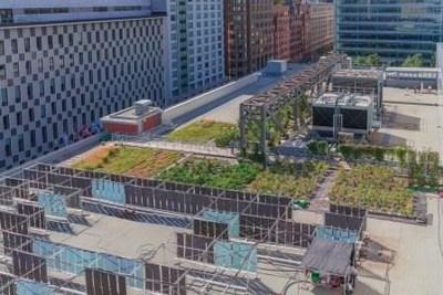 Le Laboratoire d''agriculture urbaine du Palais des congrès de Montréal. (Groupe CNW/Palais des congrès de Montréal)