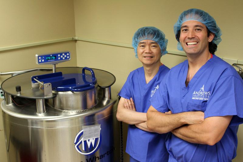 Regenerating Knee Cartilage With Stem Cells