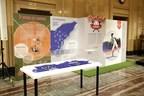 Exposition : Montréal à coup sûr! Une histoire de baseball (Groupe CNW/Ville de Montréal)