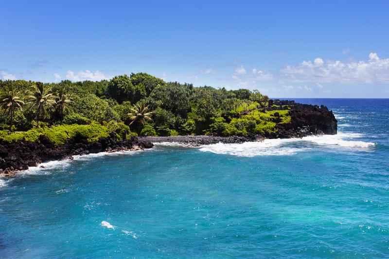 Talk Fusion Celebrates 10th Anniversary in Maui, Hawaii