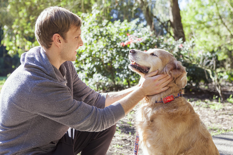 Paby Smart Pet Location and Activity Tracker Provides Real-Time Activity/Wellness Info to Pet Owners for Complete Peace of Mind!