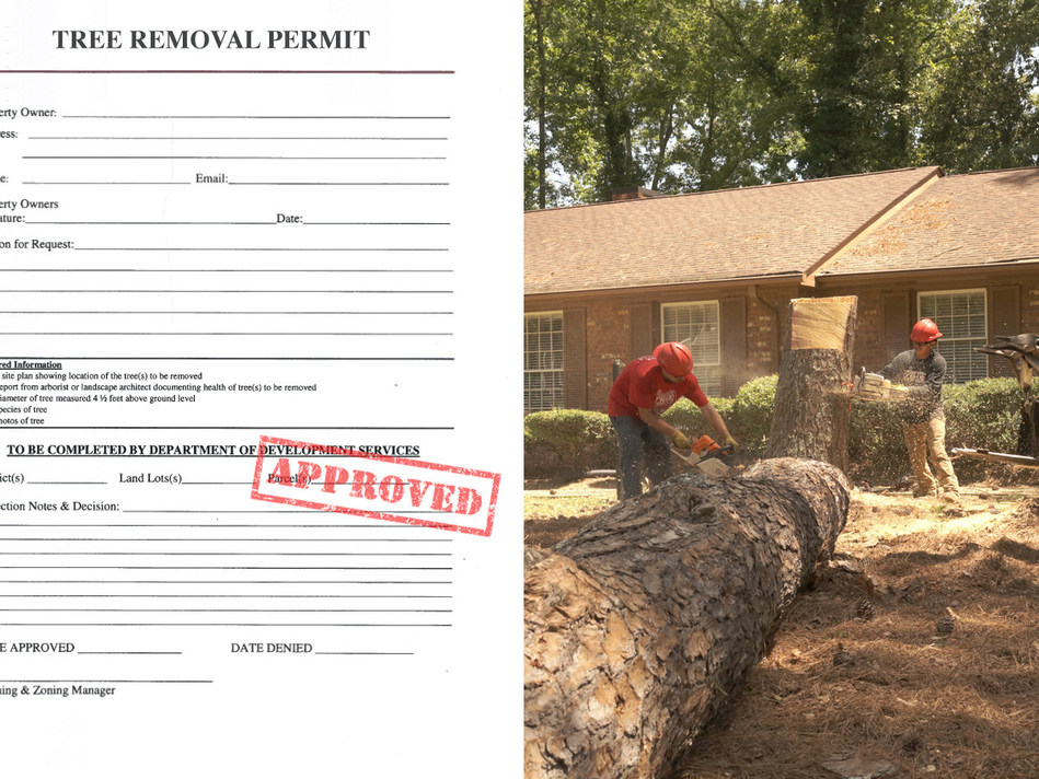 Created to help people deal with removal of dead, dying, injured or hazardous trees, Tree Removal Permit offers helps with tree protection ordinances and permit applications.