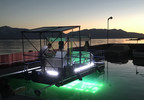 The UV Light boat uses targeted UVC light to eradicate aquatic invasive weeds.  After the first week of treatment, the weeds are gone.