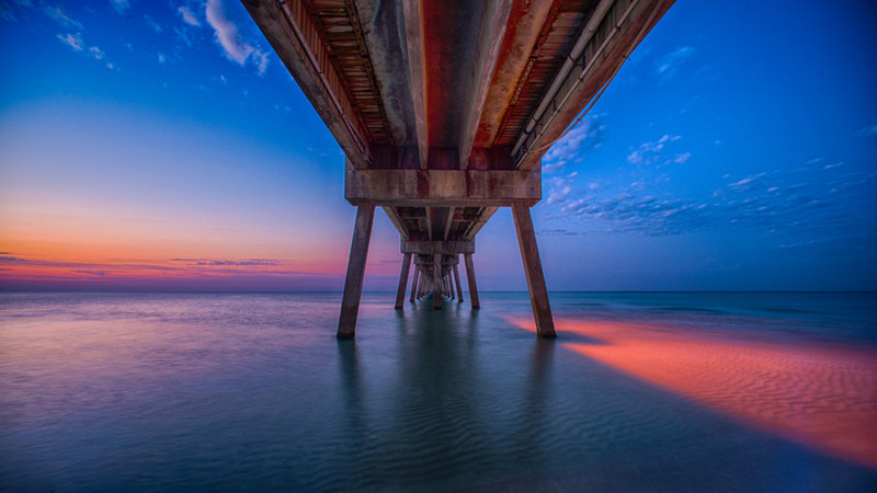 1st Place Winner from 2016 STEaM Photography Show
