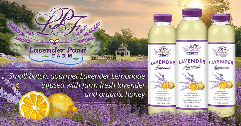 Small batch gourmet lemonade infused with lavender and honey