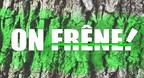 Logo : On Frêne! (Groupe CNW/Conseil de l'industrie forestière du Québec)