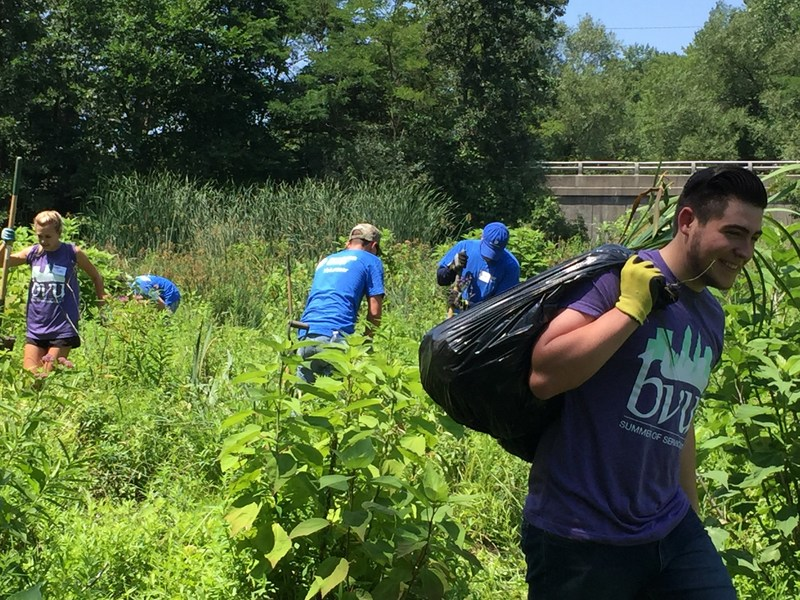 "Dominion volunteers move invasive weeds at The Nature Center at Shaker Lakes during the Business Volunteers Unlimited ""Summer of Service"" event on July 14, 2017."