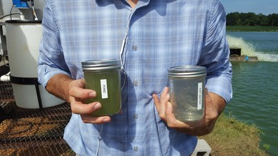 The jar on the left shows water scooped up from the pond before the water is filtered by the mobile harvesting unit. The jar on the right shows what the clean, filtered water looks like as it is pumped back into the pond.