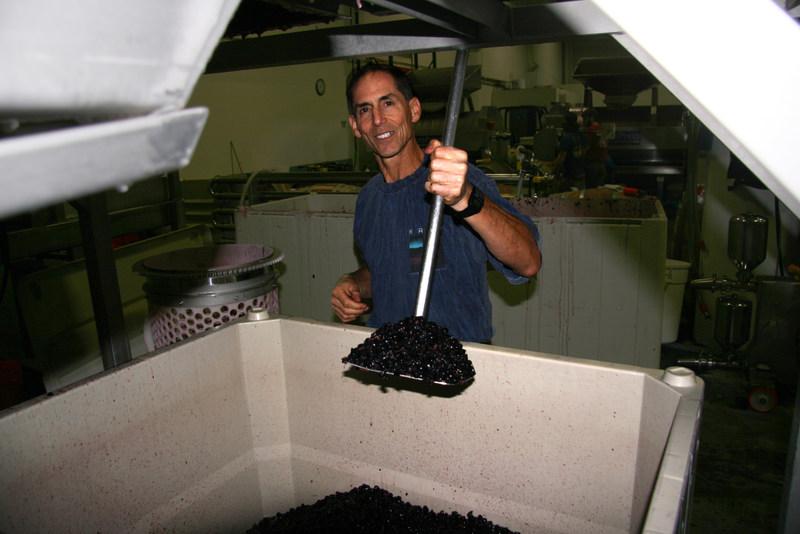 Winemaker Dr. Bob crushing Syrah grapes.