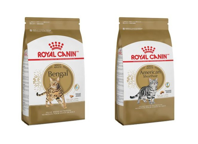 Royal Canin, a global leader in pet health nutrition, is continuing to pioneer breed-specific innovation with the launch of two new feline formulas: Royal Canin® American Shorthair and Royal Canin® Bengal diets. The Royal Canin® American Shorthair and Royal Canin® Bengal formulas can now be found in select retailers; for information on these locations, consumers can visit www.royalcanin.com/store-locator.