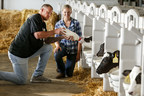 Minnesota Vikings tight end Kyle Rudolph trains for the Land O'Lakes Farm Bowl with Brooke Carrow from Enchanted Dairy in Little Falls, MN, who is teaching him how to feed calves from a bottle.