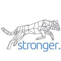Stronger International - New Logo