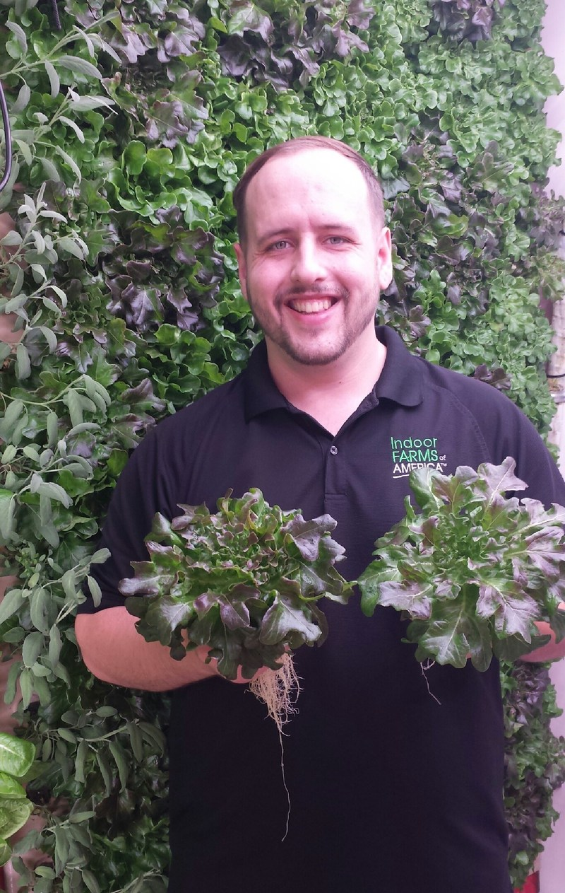 Indoor Farms of America corporate Farm Manager Anthony Randolph grows beautiful greens in the vertical aeroponics from IFOA.