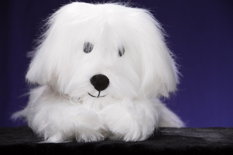 RiLEYDAWG - a hugs and smiles comfort pet