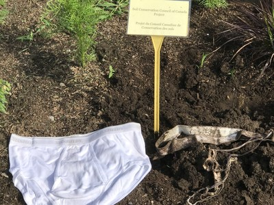 Side-by-side comparison of the Stanfield's undies. Left - brand new undies; right - official SCCC undies that were dug up at the Canada Agriculture and Food Museum in Ottawa. (CNW Group/Soil Conservation Council of Canada (SCC))