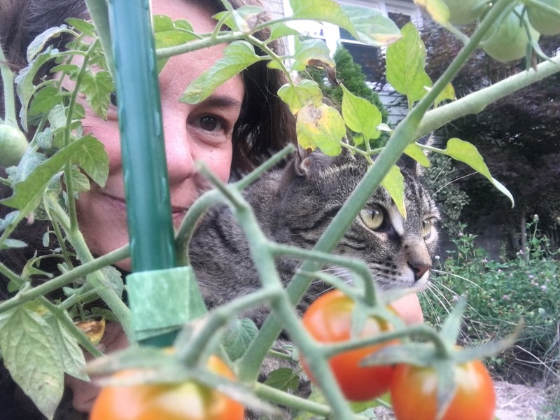 Christine and her cat Rocco in her all-important tomato garden.
