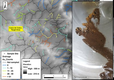 Figure 1: Stream anomalies with drainage coloured by gold counts, with digital elevation model in the ...