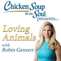 """Animal lovers have a new place to tune in for the latest animal news with """"Loving Animals with Robin Ganzert."""" Presented by Chicken Soup for the Soul, the new weekly series provides the latest updates in the worlds of pets, animal rescue, conservation, and animal celebrity news."""
