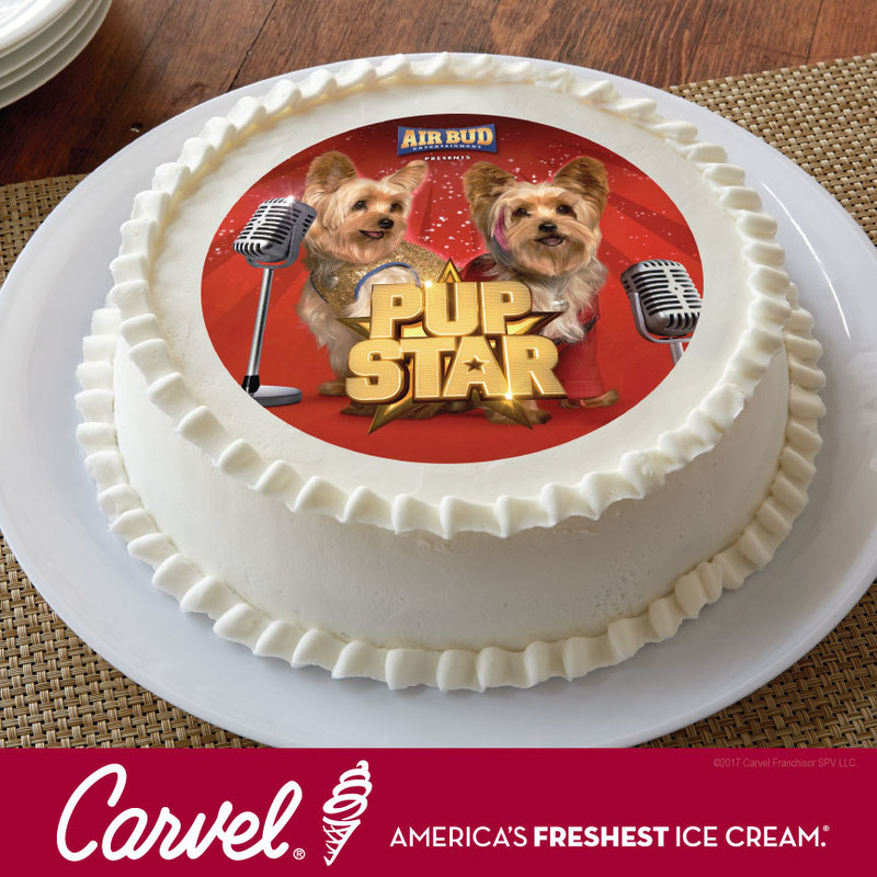 CARVEL® PARTNERS WITH AIR BUD ENTERTAINMENT FOR PUP STAR: BETTER 2GETHER