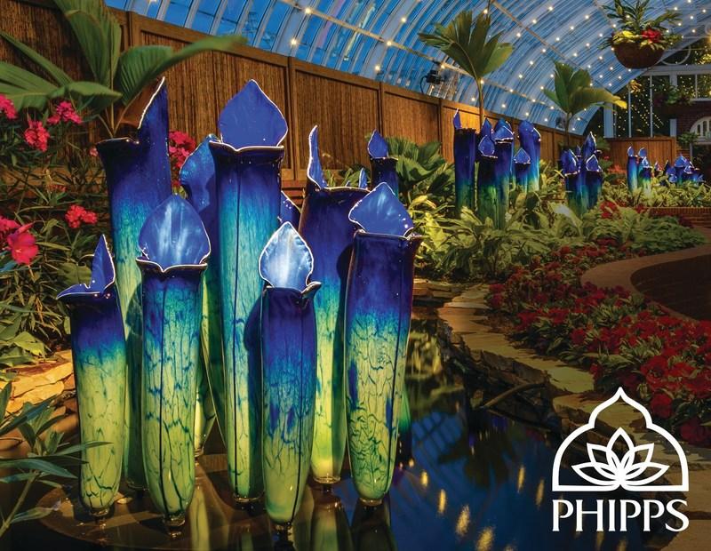 Phipps presents SUPER. NATURAL. exhibit