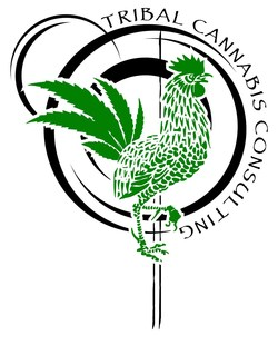 Tribal Cannabis Consulting (TCC) provides quality solutions to businesses that desire to start, or further their existence in the marijuana industry. TCC offers a full spectrum of services, from capital investments and funding development strategies, to consultations and complete development partnerships. It's team of expert consultants are former industry owners and operators from throughout the United States. For more information visit tribalcannabisconsulting.com.