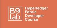 Hyperledger Fabric Developer Course logo