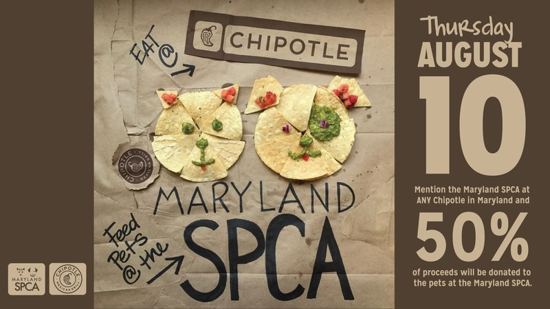 Eat at any of the 81 Chipotle locations in Maryland on August 10, 2017 from 11 a.m. to 10 p.m., and 50% of your purchase will be donated to the Maryland SPCA simply by saying you are there to support the Maryland SPCA before placing your order. Online orders count, but patrons must pay for their order in the store and mention they are there to support the Maryland SPCA.