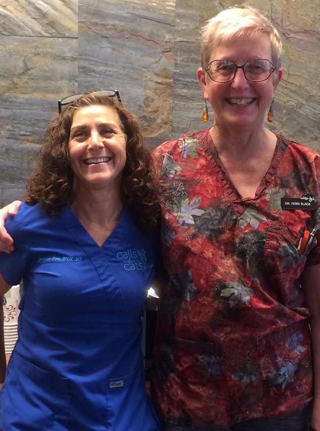 Dr. Jessica Fine (left) and Dr. Fern Slack (right) celebrate the joining of Calls for Cats LLC with Uniquely Cats Veterinary Center in Boulder, CO