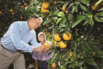 Citrus grower David Evans (left) inspects the damage to a grove in Florida together with Dr. Dennis Warkentin from Bayer