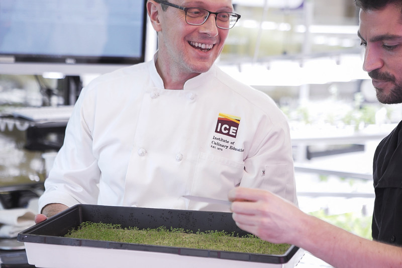 Bill Telepan explores the hydroponic garden at The Institute of Culinary Education