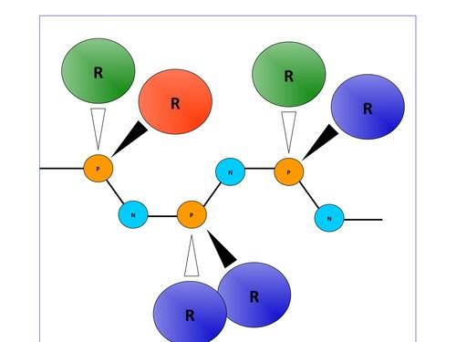 Polyphosphazene Structure